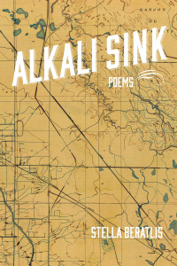 Alkali Sink Cover Image